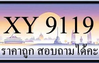 ขายทะเบียน 9119