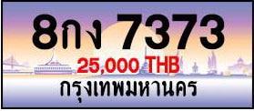 ขายทะเบียน 8กง 7373