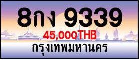 ขายทะเบียน 8กง 9393