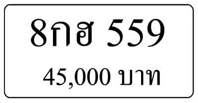 ขายทะเบียน 8กฮ 559